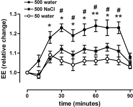 water-boosts-metabolism